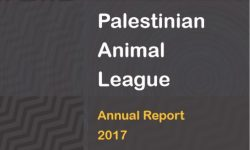 PAL Annual report 2017